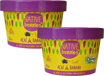 Imagem de Sorbet de  Açai com Banana -  Native Berries 200g
