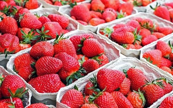 Imagem de Morango Premium  Orgânico  Sitio Arcanjo 250g